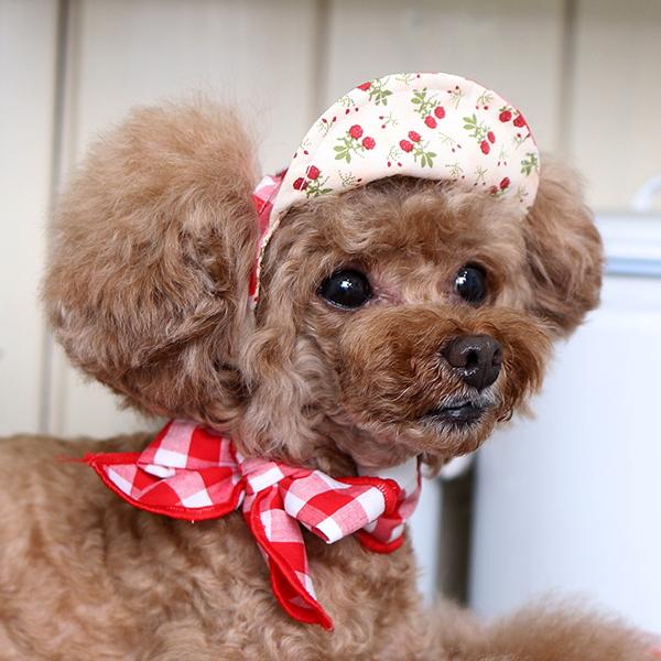 Summer Cap - Red