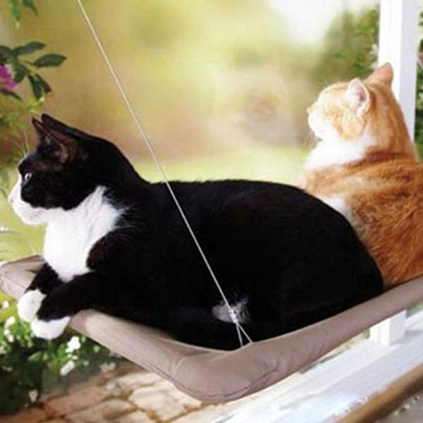 고양이 창문해먹 서니시트