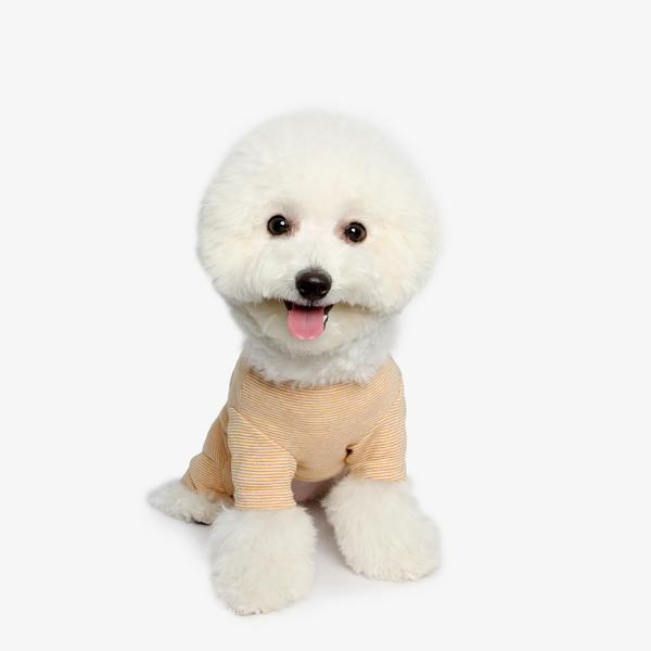 강아지 내복 올인원 - 머스타드