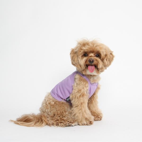 강아지 쿨조끼 쿨나시 티셔츠(보라)
