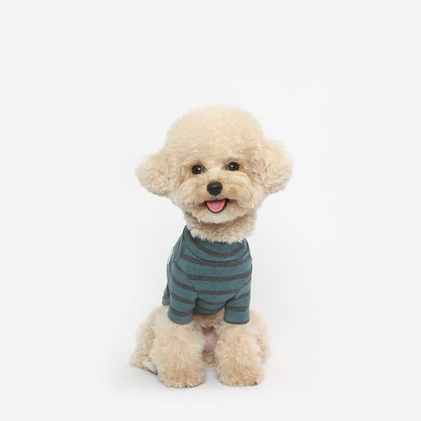 강아지 목폴라 티셔츠 (그린)