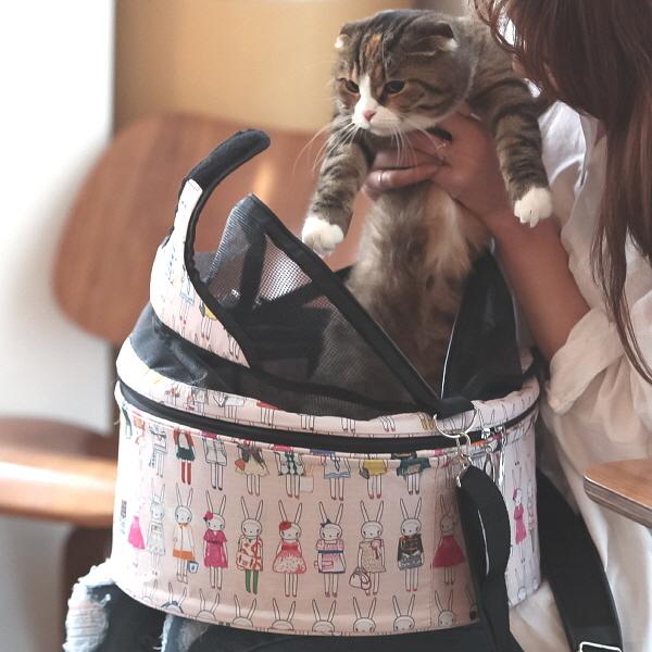 고양이 패션 이동가방 - 큐티 토끼 이동가방 - 고양이용