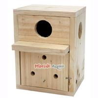 잉꼬알통 - (새부화 새알통)