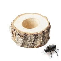 국산 곤충 먹이접시 1구 - (장수풍뎅이 먹이그릇)