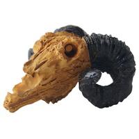 노모펫 산양해골 장식품 (NS-92)