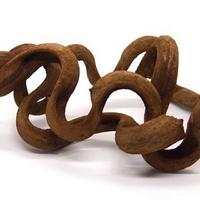 파충류 덩굴 유목 L (모양, 사이즈 랜덤)