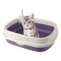 블루파우 가든 고양이 평판형 오픈 화장실 대형 퍼플