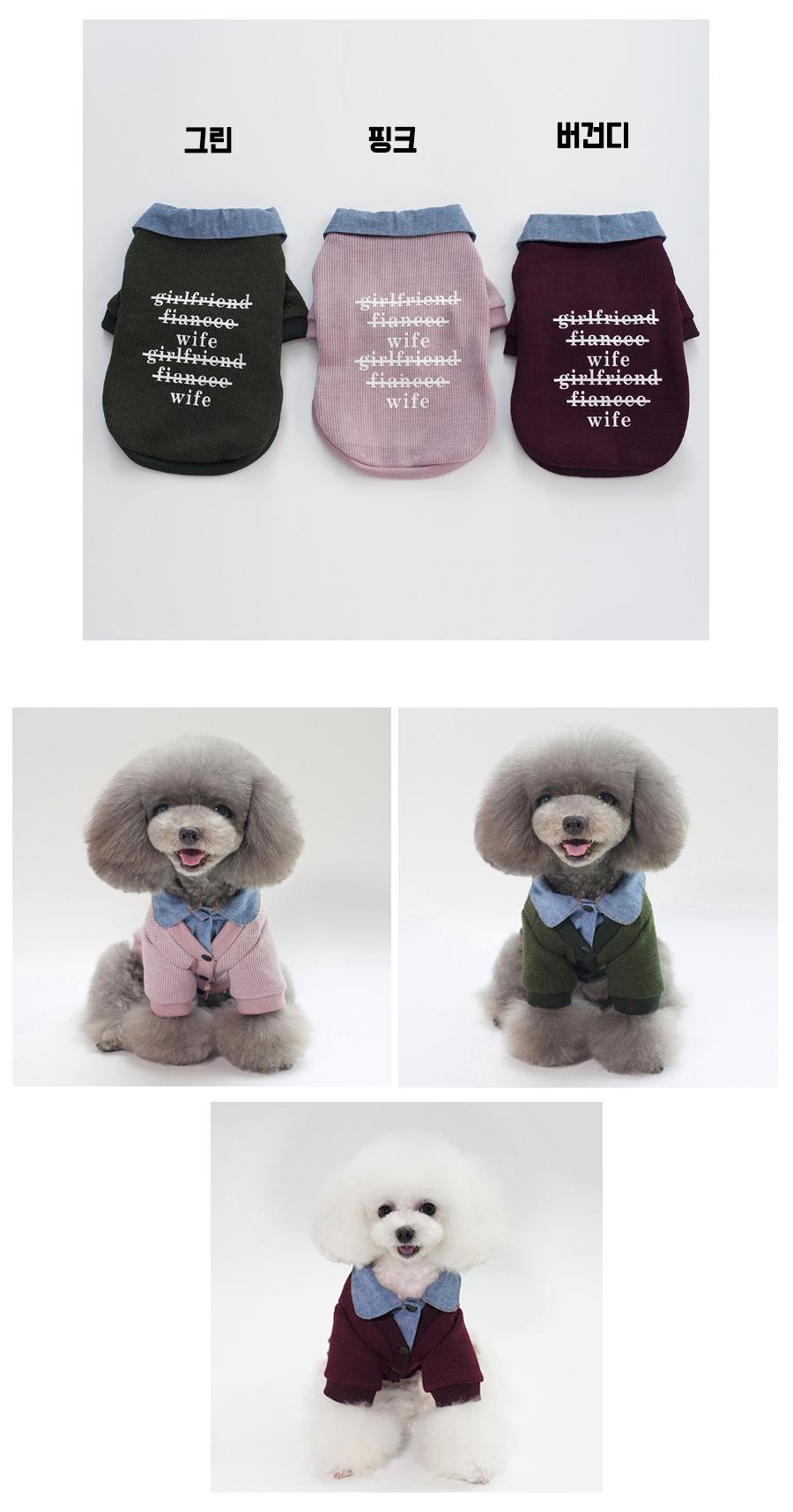 댕댕이 니트9,900원-제이케이펫샵, 강아지용품, 의류/액세서리, 의류바보사랑댕댕이 니트9,900원-제이케이펫샵, 강아지용품, 의류/액세서리, 의류바보사랑