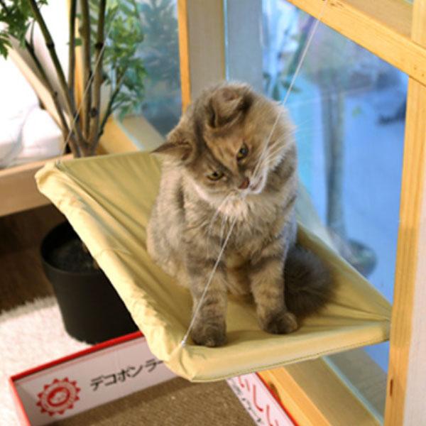 고양이 윈도우 해먹