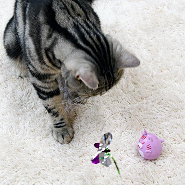 고양이 호기심 장난감 캐티맨 빙글빙글 오뚜기