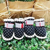 애견신발 도기스쿨 매쉬 땡땡이 초소형견 전용 신발