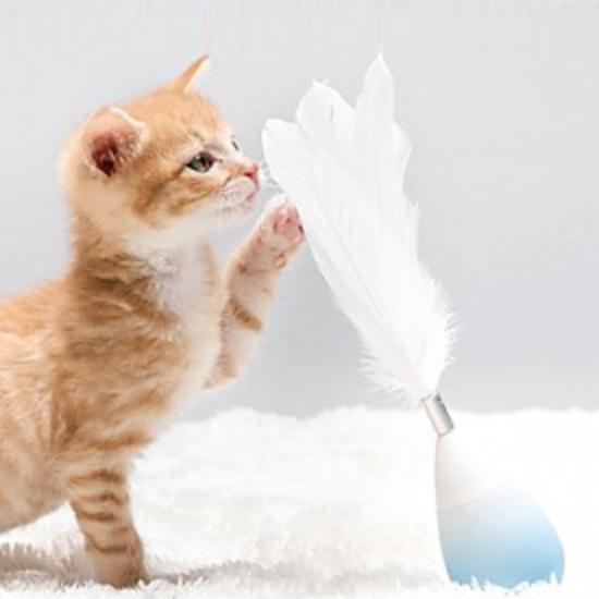 피단 고양이장난감 깃털 오뚜기