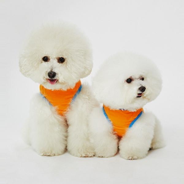 Best Friend T-shirts(Orange)