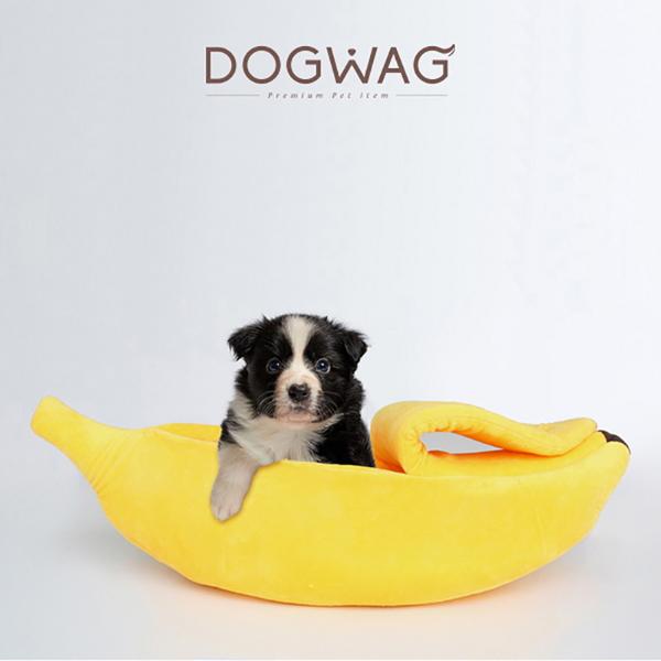 도그웨그 DOGWAG 바나나 요람 바나나 숨숨집