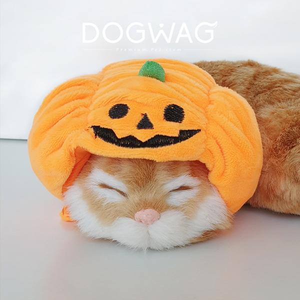 호박 모자 강아지 고양이 할로윈 코스튬