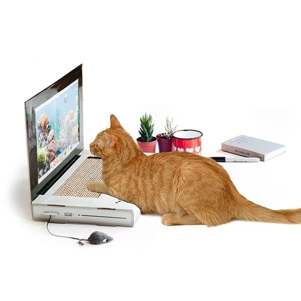 썩유케이 노트북 고양이 스크래쳐