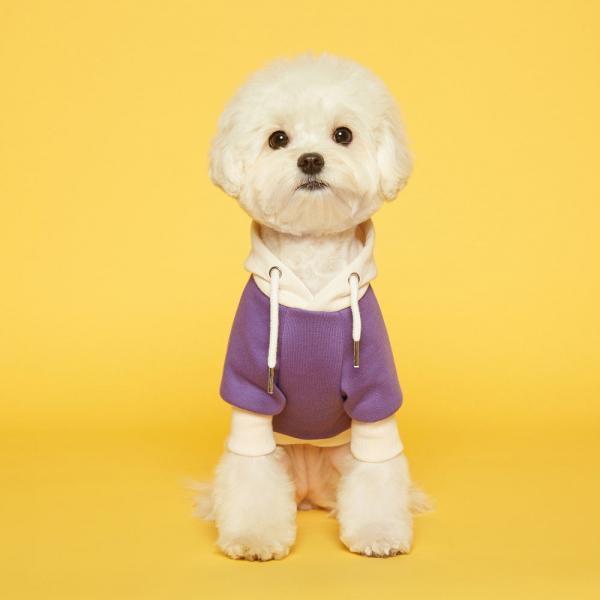 플로트 스탠다드 후드 퍼플아이보리 강아지옷