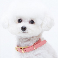 핑크 코피아 강아지 목줄 S