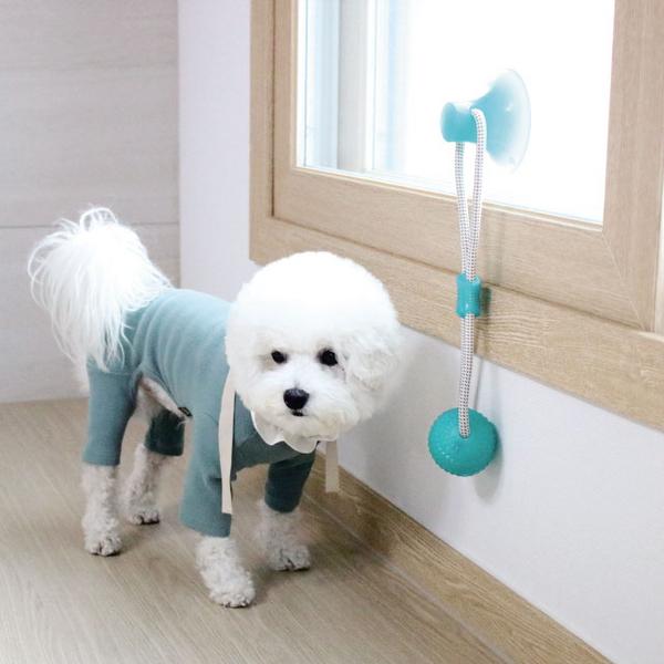 리스펫 강아지 셀프 터그놀이 장난감 그린