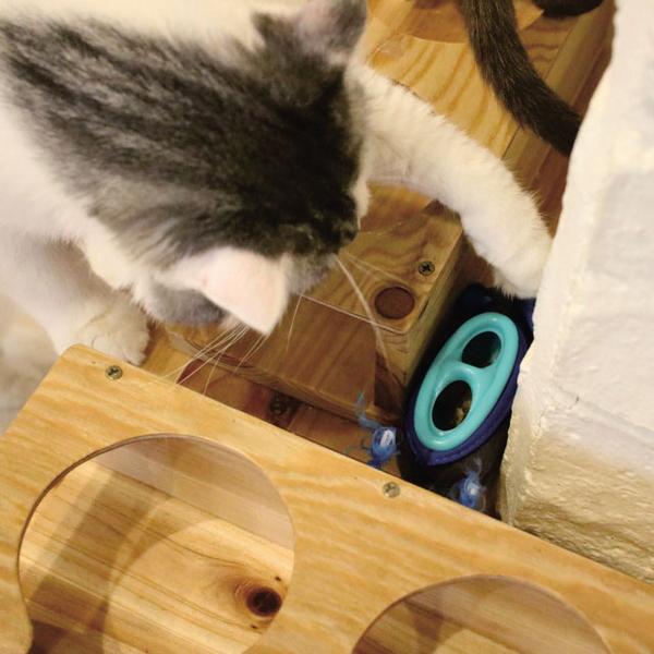 리스펫 숨박꼭쥐 고양이 먹이퍼즐 장난감 고양이를 부탁해 장난감