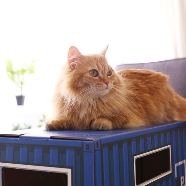 고양이 숨숨집 2층 하우스