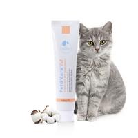 페토세라 고양이 전용 보습 크림 40ml