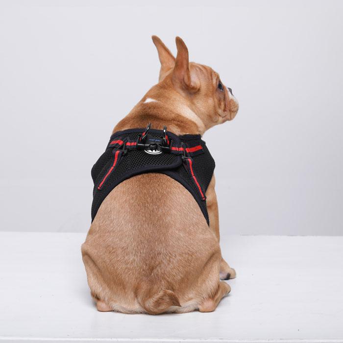 진드기 방지 하네스 나인티모 조끼 산책용 가슴줄 XL