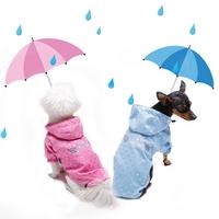 리얼펫 엔젤 강아지 우비 겸용 바람막이 점퍼 아우터