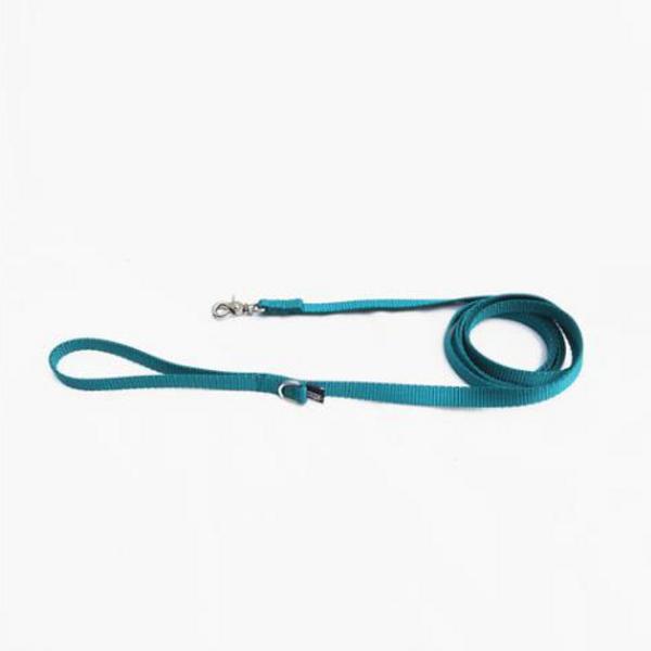 BLUE GREEN_LEAD
