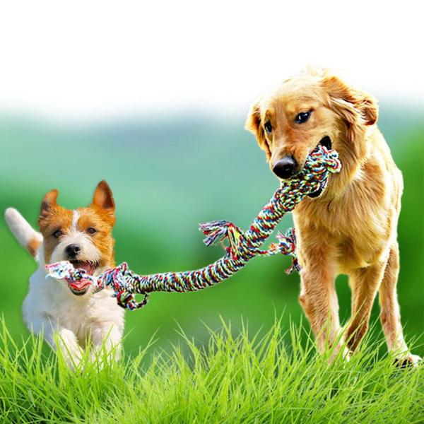 레오펫 대형견 강아지 터그놀이 장난감 로프