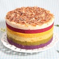 힐링펫 수제케익 레인보우 케이크