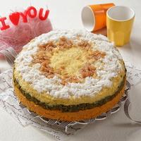 힐링펫 수제케익 오리호박 케이크