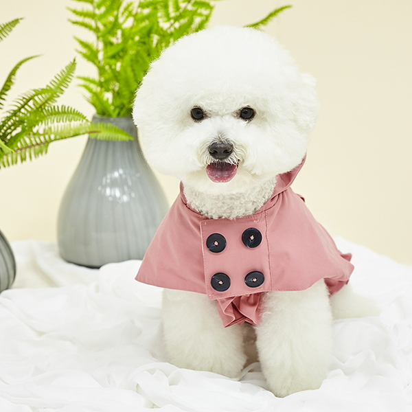 에덴숑-Avec-Pink(아베크-핑크)