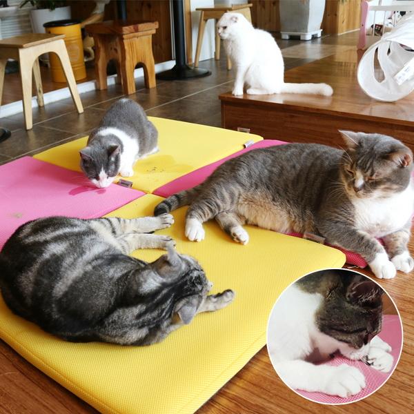 고양이 스크래쳐 만원의냥이행복 캣닢 장난감 놀이터