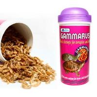 아마존 감마루스 250ml(20g)