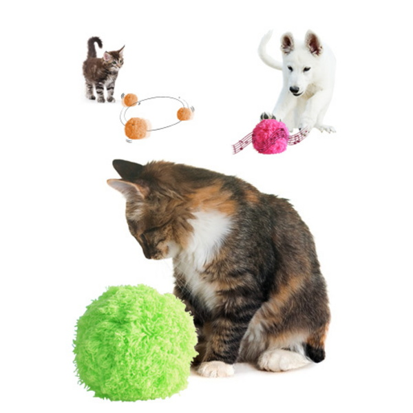 고양이 장난감 자동청소기 모코로볼