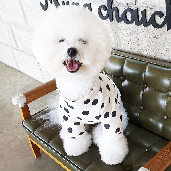 DOG_몽페레 플러피 도트맨투맨 (Milk Cream)