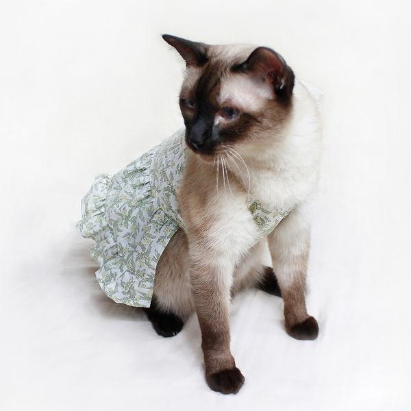 몽페레 고양이 프로방스 홀터넥 원피스 허브티