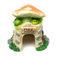 TL001H 개구리버섯