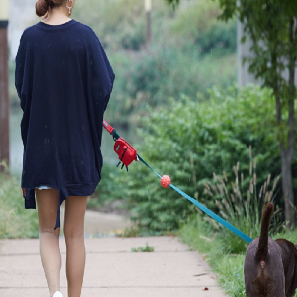 분독 배변봉투 캐리어 다목적 똥츄가방 G백 레드