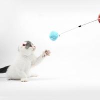 고양이 솜솜방울 장난감 낚시대