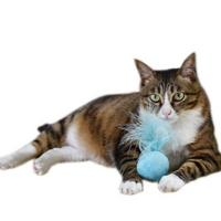 고양이 캣닢 깃털 볼 장난감