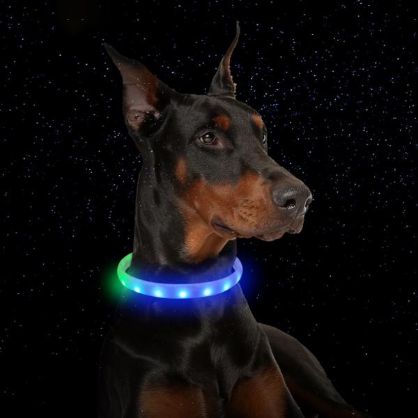 강아지 목줄 악세사리 야간 산책 패션 패턴 LED 목걸이