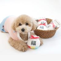 패리스독 반려동물 장난감 인형 복주머니 토이