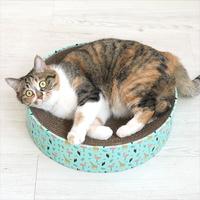 패리스독 고양이 서클 스크래쳐