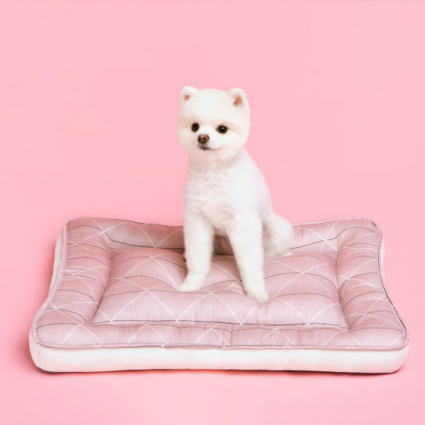 발라당 강아지 고양이 모달 방석 사각 M사이즈