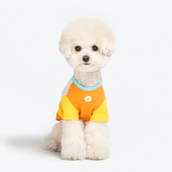 라인프렌즈 - 샐리 삼단 배색 반팔티셔츠