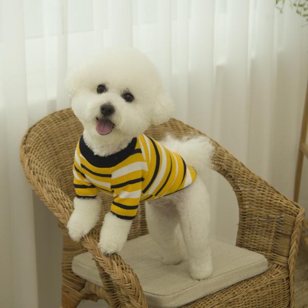 유니온 베이직 강아지 티셔츠 옐로우