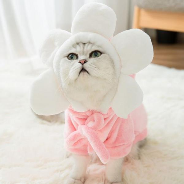 예펫 고양이 강아지 꽃 후드티 실내복 극세사 밍크 19