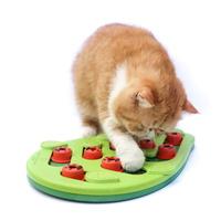 니나오토슨 버깅 아웃 퍼즐 플레이 고양이 장난감
